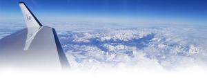 FlexExec Global Flight
